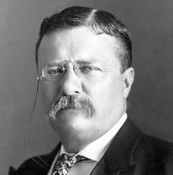 Theodore Roosevelt Jr., 26th President of the United States