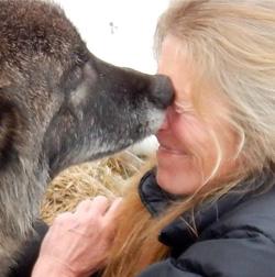 Delia G. Malone, Rocky Mountain Wolf Project